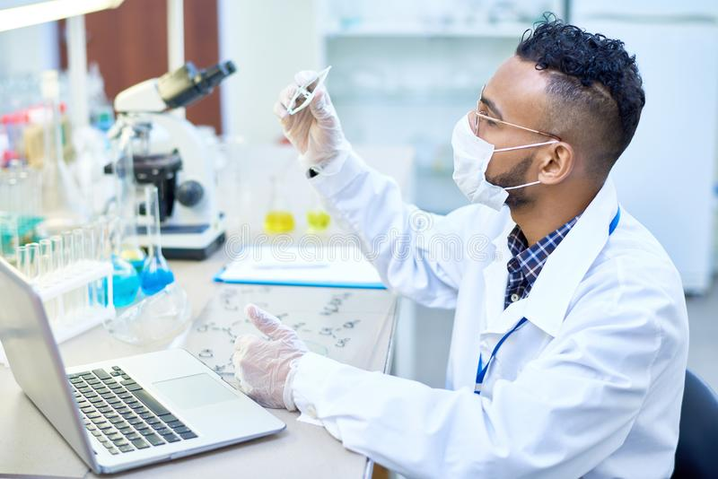 Middle-Eastern Scientist Working in Lab stock photo