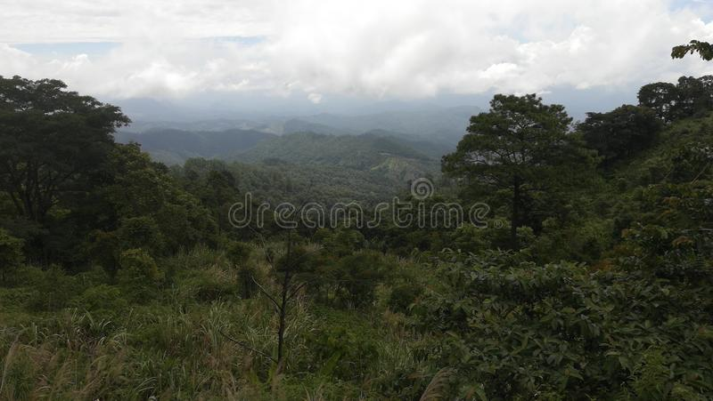 In the middle of the jungle, chiang mai, thailand. View of the landscape royalty free stock image