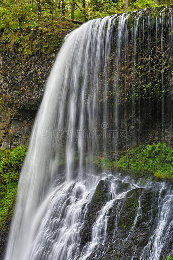 Middle North Falls, Silver Falls State Park stock image