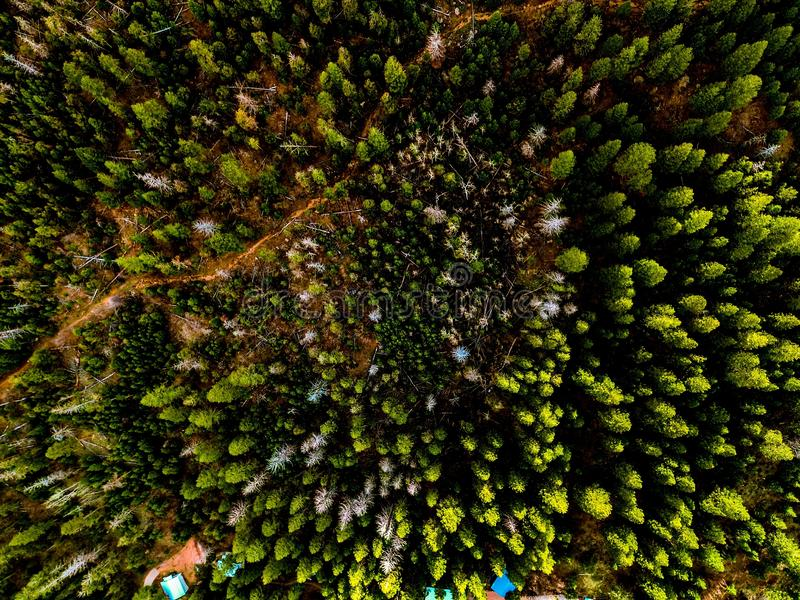 Middle of nowhere. Trees, sky, drone, ariel, aerial, photography stock photography