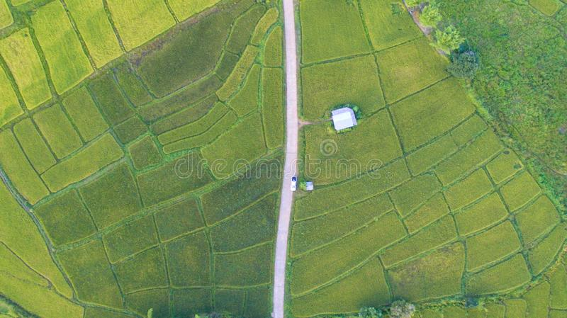 Middle path with drone stock images
