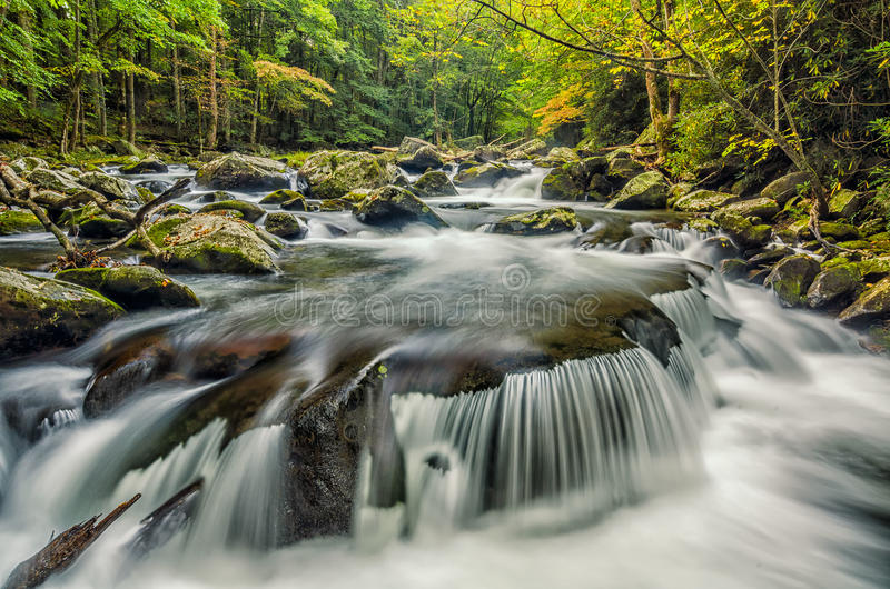 Middle Prong of the Little River, Great Smoky Mountains. Clear water cascades over rock during early fall along the Middle Prong of the Little River in the Great stock photos