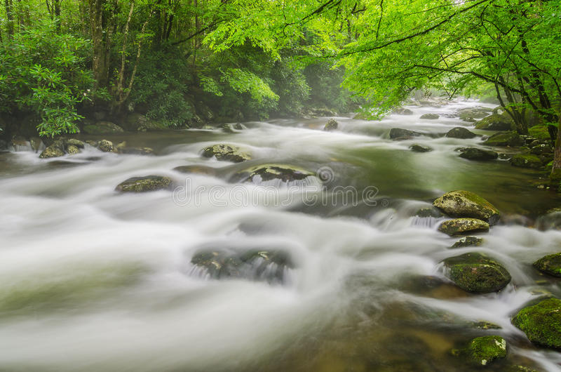 Middle Prong mist, Great Smoky Mountains. A misty morning along the Middle Prong of the Little River in the Great Smoky Mountain National Park royalty free stock photo