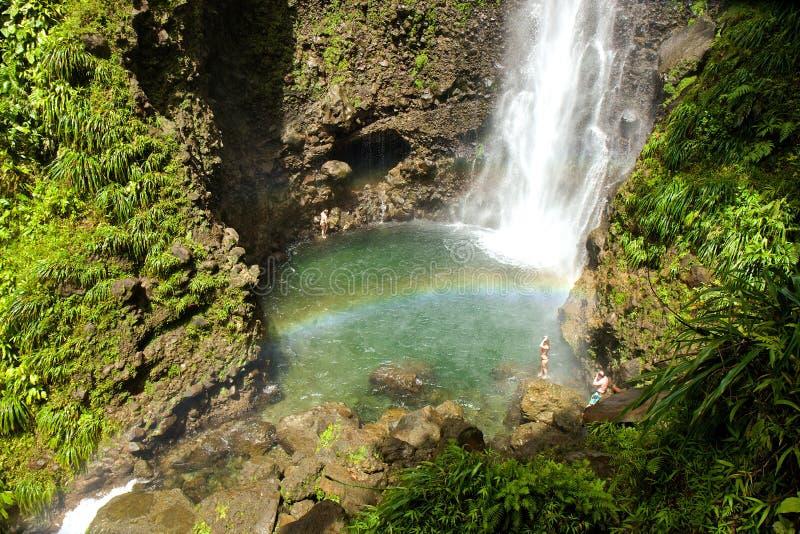 Middleham-Wasserfall, Dominica lizenzfreie stockfotografie