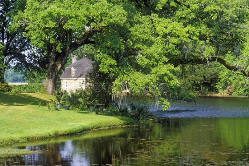 Middleton Place Plantation, Charleston, Sc immagine stock