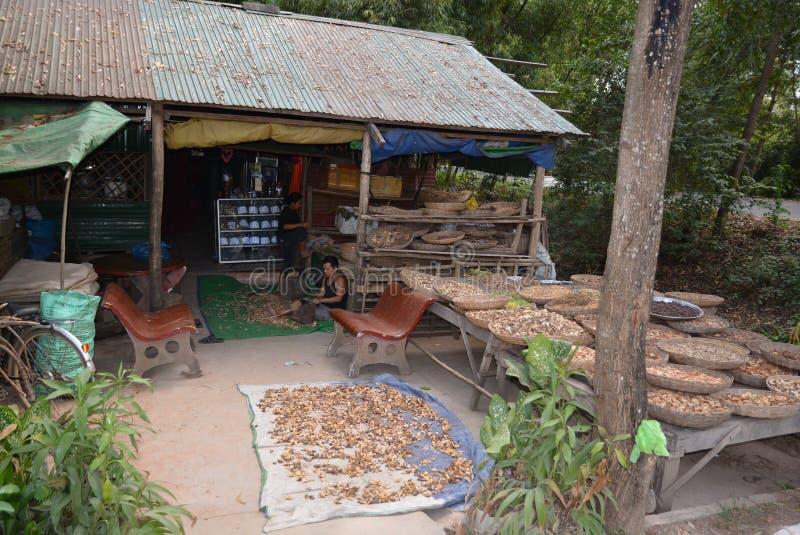 Midecine khmer antico fotografia stock