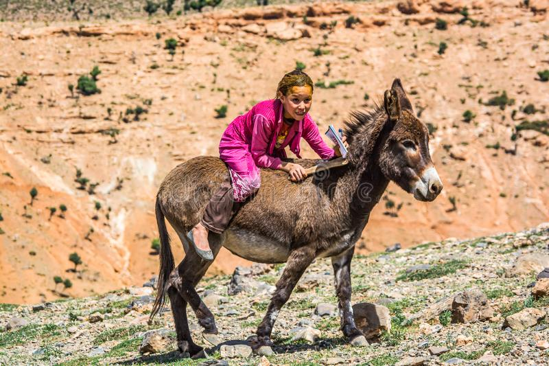 Midelt, Marrocos - 5 de outubro de 2013 Menina do Berber com hena no cabelo que monta no asno do bebê imagens de stock royalty free