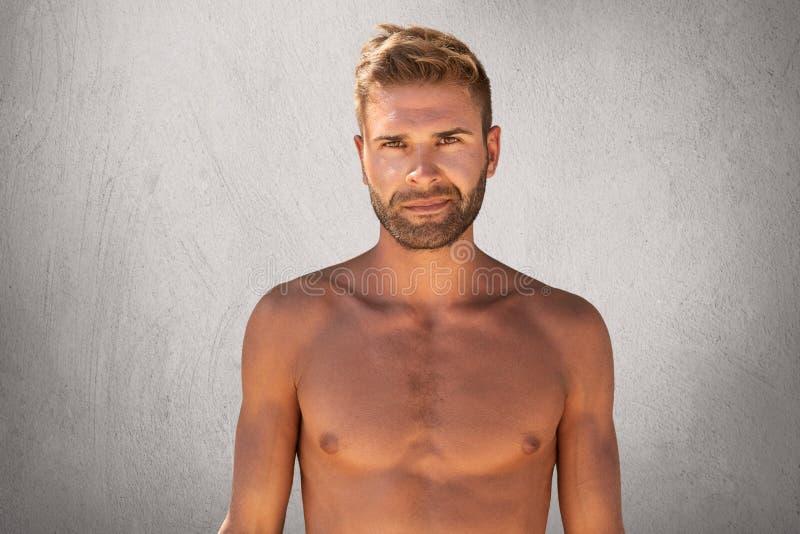 Midja upp ståenden av den topless orakade unga mannen med starkt kroppanseende mot grå bakgrund över kopieringsutrymme Muscul royaltyfria foton
