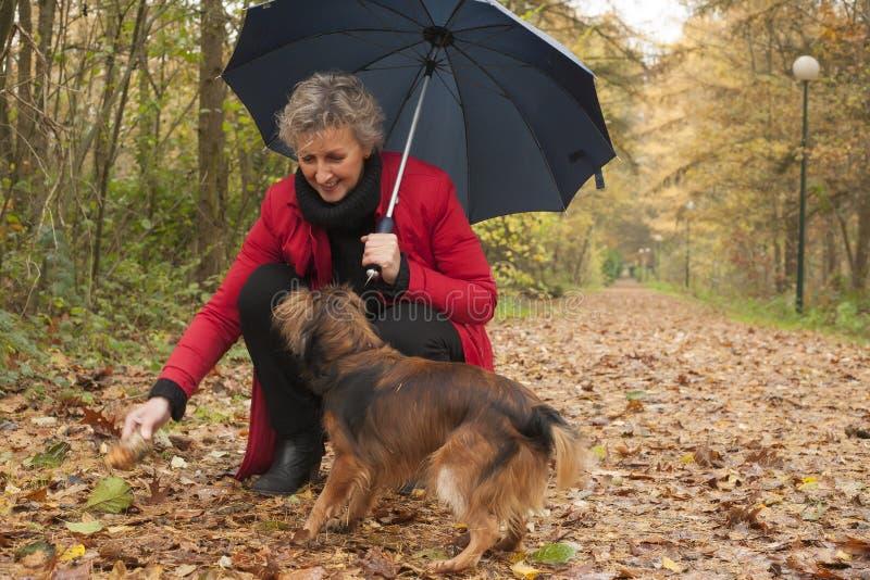 Midlle envelheceu jogos da mulher com seu cão imagem de stock royalty free