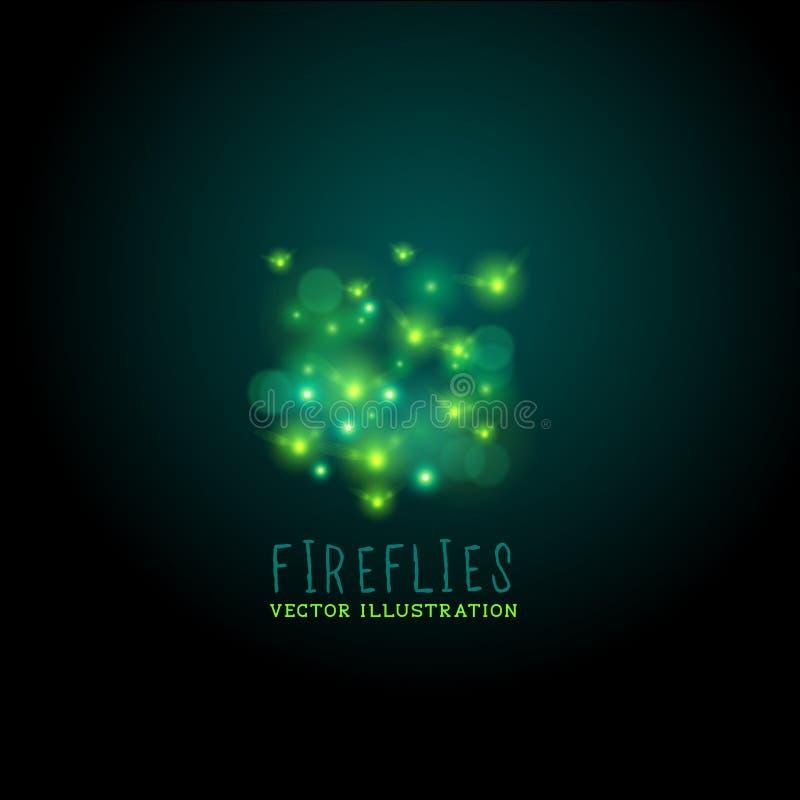 Midnatt eldflugavektor vektor illustrationer