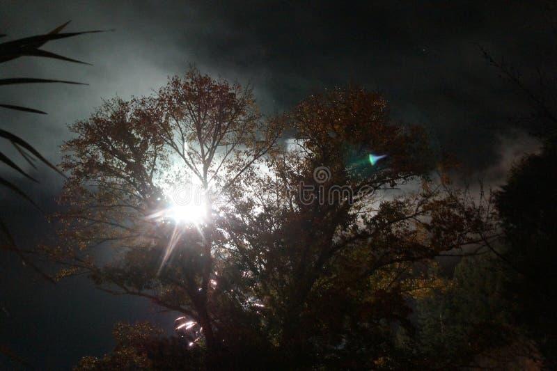 Midnatt sunburst royaltyfri bild