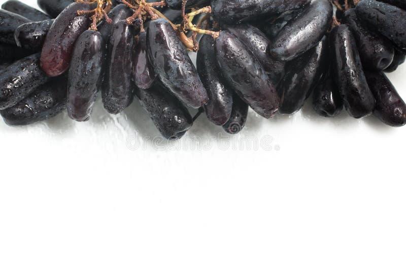 Midnatta långa svarta druvor royaltyfri bild