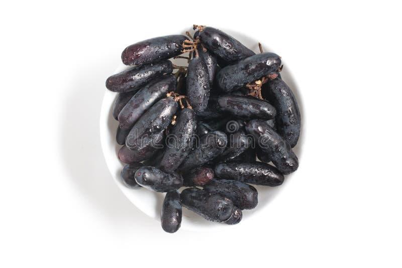 Midnatta långa svarta druvor royaltyfri fotografi