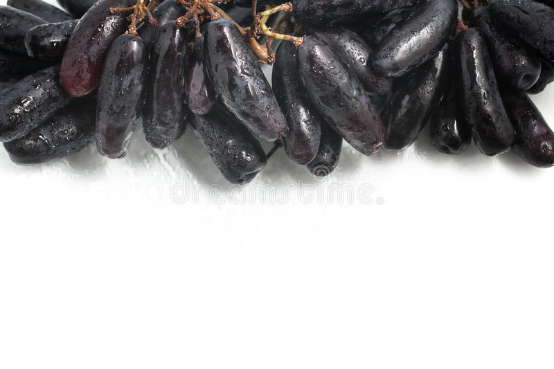 Midnight Long Black Grapes frame stock photo