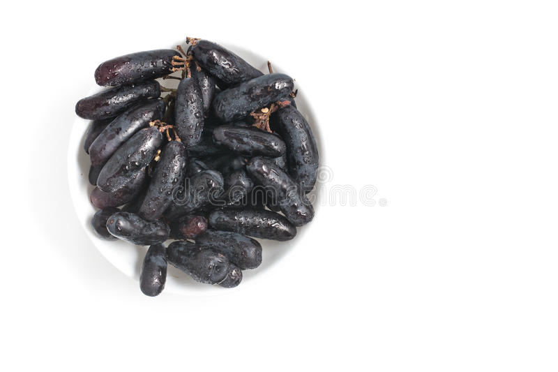 Midnight Long Black Grapes stock image