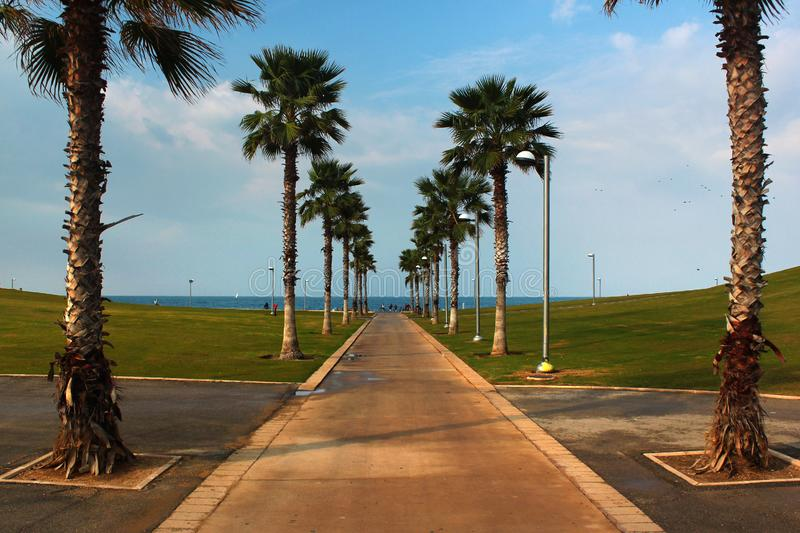 Midron Yaffo seafront park, a popular place for recreation among locals and tourists in Tel-Aviv. Israel stock photos