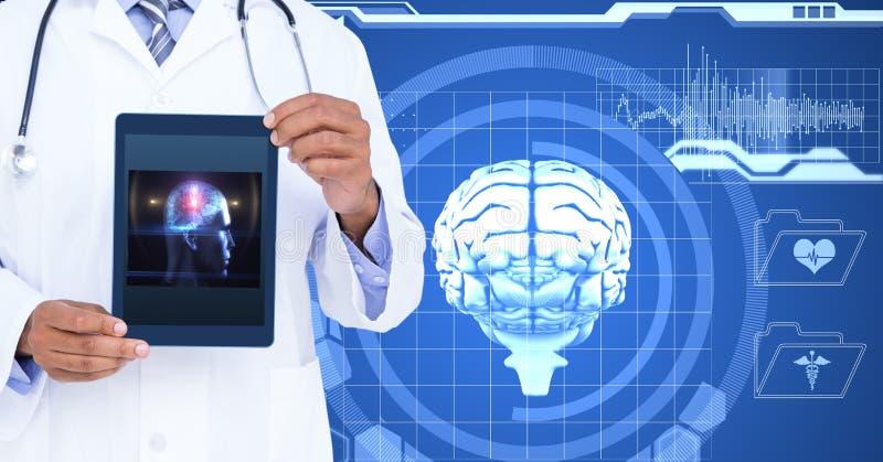 Midsection die van arts menselijke hersenen op tabletpc tonen tegen het scherm royalty-vrije stock fotografie