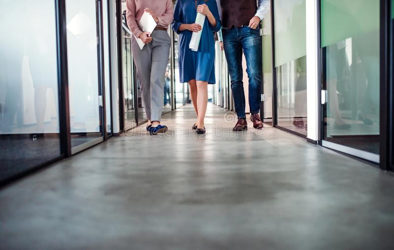 Midsection of group of business people walking in an office building. royalty free stock images
