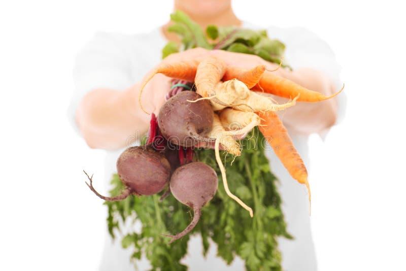 Midsection van de groenten van een vrouwenholding stock foto