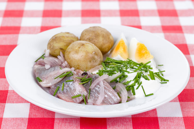 Midsummer food. A plate with swedish Midsummer food with pickled herring, potatoes, chives, sour cream and eggs on a red checkered cloth royalty free stock photography