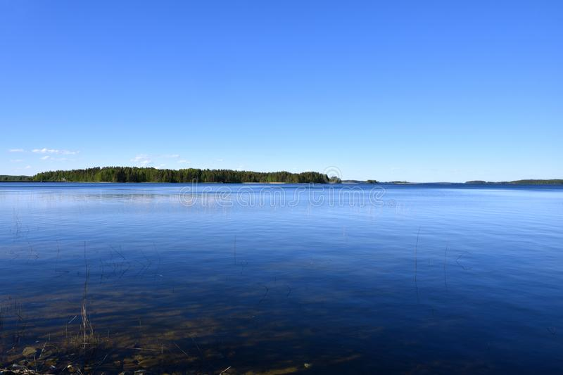 Midsummer nature in Finland. Midsummer nature at the blue Lake Puruvesi in Eastern Finland royalty free stock photos