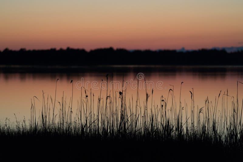 Midsummer nights dream stock image