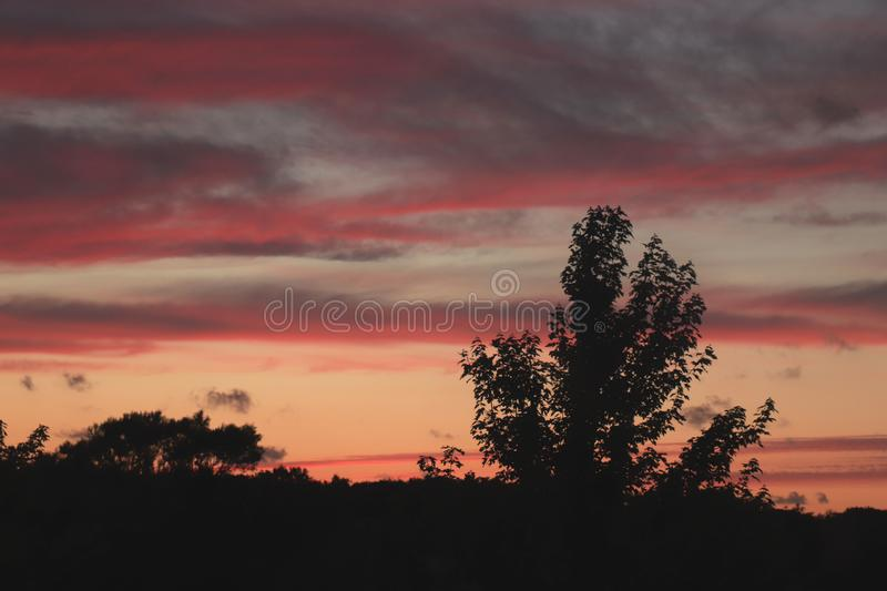 Midsummer sunset sky. Colorful midsummer sunset sky with silhouettes of trees stock photos