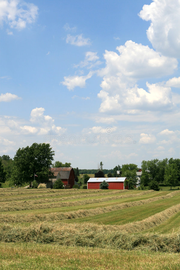 MidWest American Farm stock images