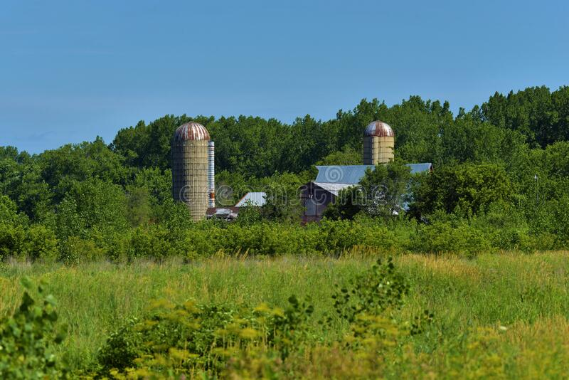 Midwest southern wisconsin overgrown farm scene. With trees and blue sky stock photo