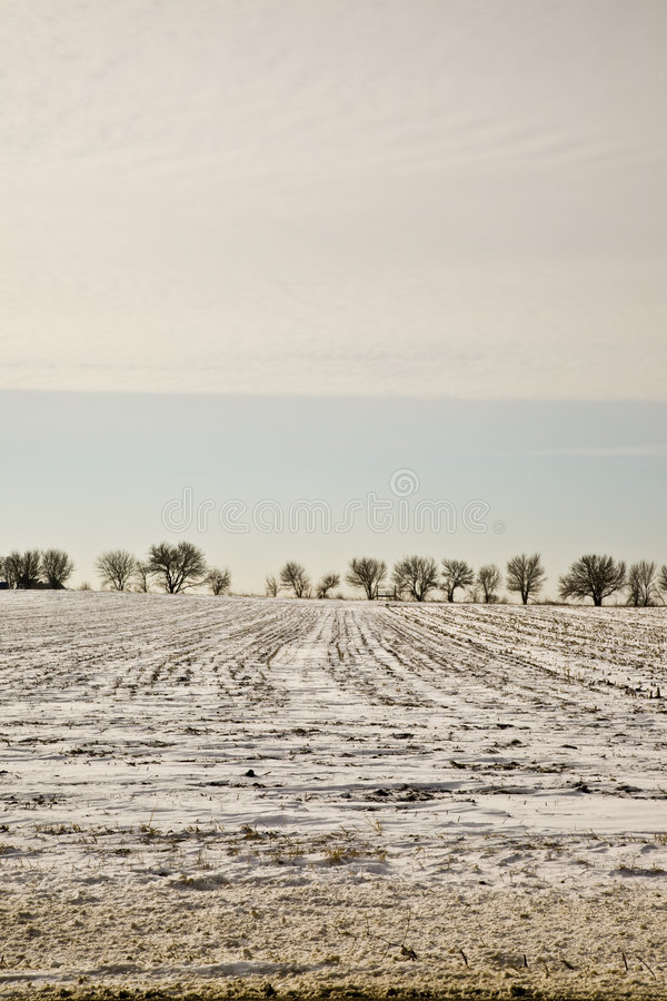 Midwestern Winter Landscape royalty free stock image