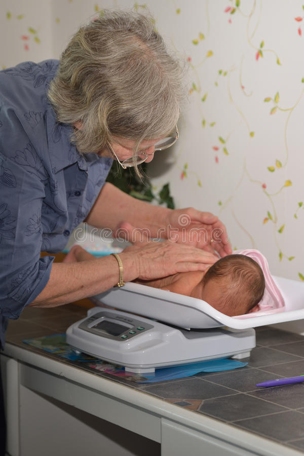 Midwife with baby. A senior midwife weighs a young baby as part of its post-natal check royalty free stock photos