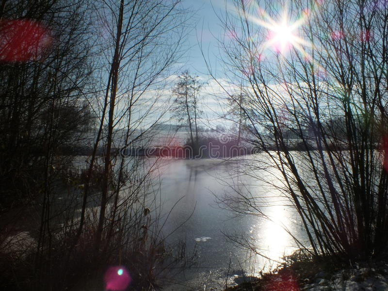 Midwinter Markelo. Frozen pond with low sun azimuth in Markelo Netherlands royalty free stock photos