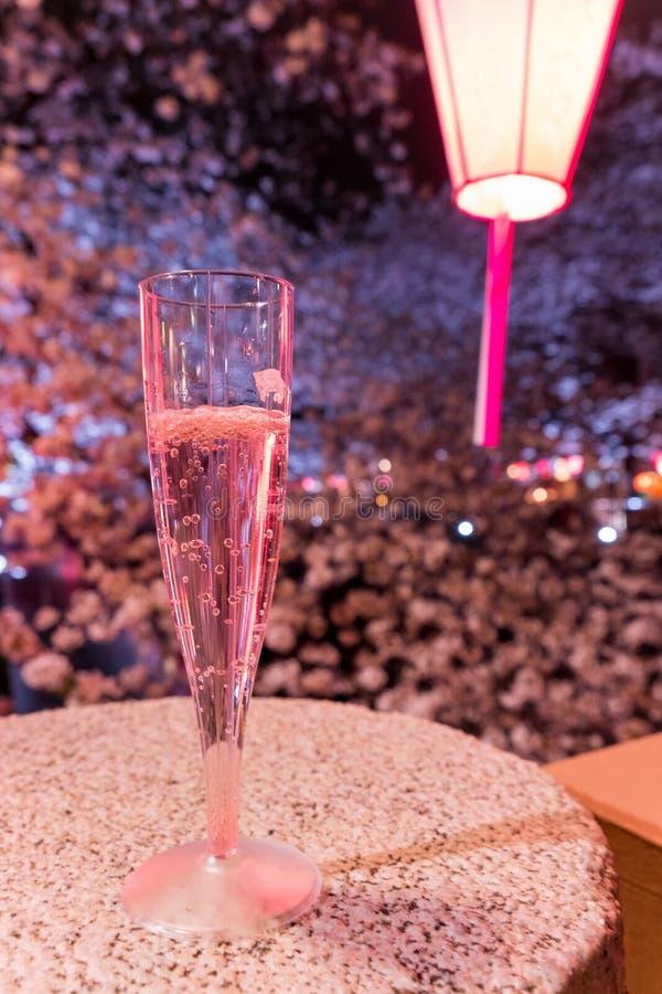 Mieć szkło Sakura szampan pod czereśniowymi drzewami wzdłuż Meguro rzeki, Meguro-ku, Tokio, Japonia obraz royalty free