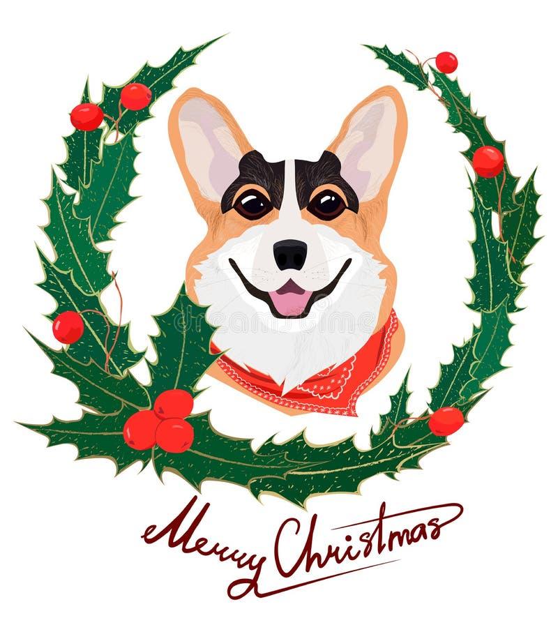 Miedzianowłosy psi Walijski Corgi z czerwonym bandaża i holly bożych narodzeń wiankiem Nowego Roku skład zieleń liście i uświęcon royalty ilustracja