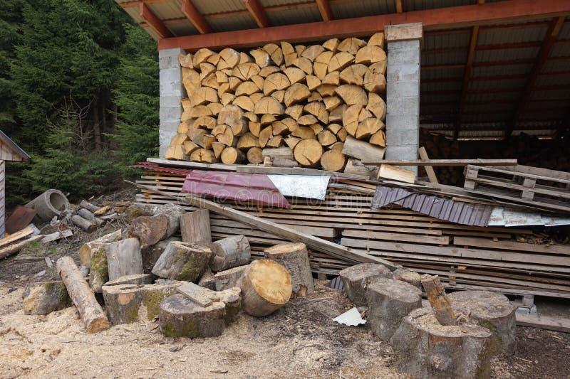 Miejsce dla siekać łupkę następnie i woodpile, zdjęcie stock