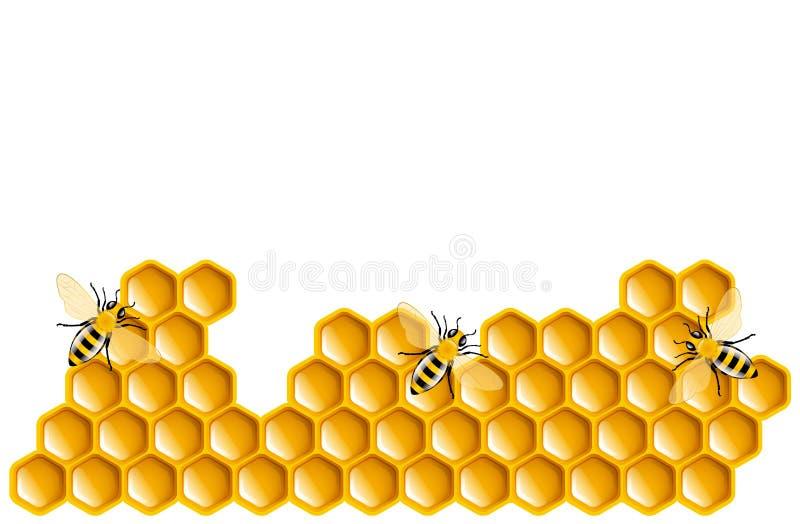 Miel illustration libre de droits