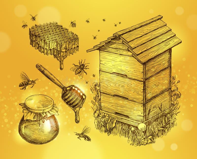 Miel, aguamiel, apicultura Ejemplo dibujado mano del vector del bosquejo de la apicultura stock de ilustración