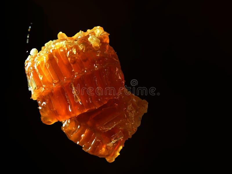 Miel d?licieux en nid d'abeilles photos libres de droits