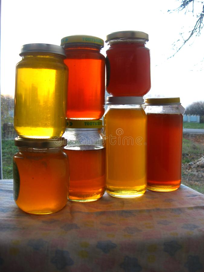 Miel dans des pots images libres de droits
