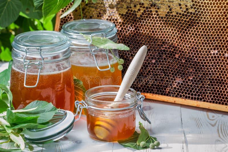 Miel dans un pot et un nid d'abeilles avec des feuilles de tilleul photographie stock libre de droits