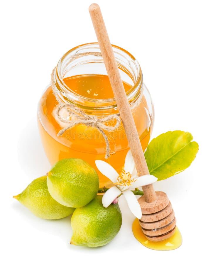 Miel de fleur de citron images stock