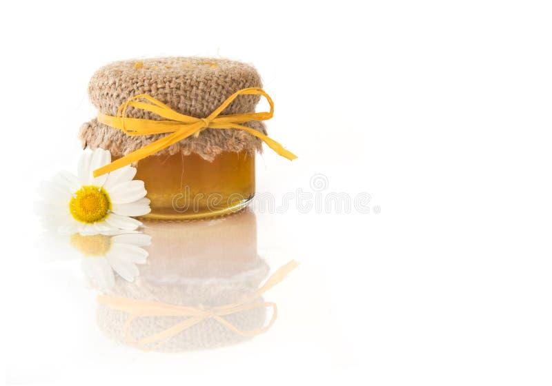 Miel de madera foto de archivo libre de regalías