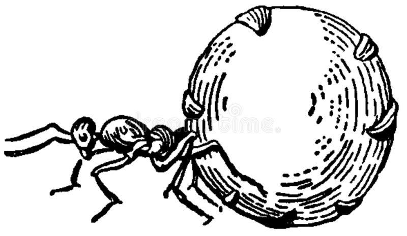 miel del a? del fourmi foto de archivo