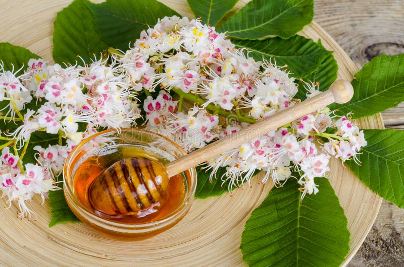 Miel deliciosa de la castaña en vidrio en superficie de madera fotografía de archivo libre de regalías