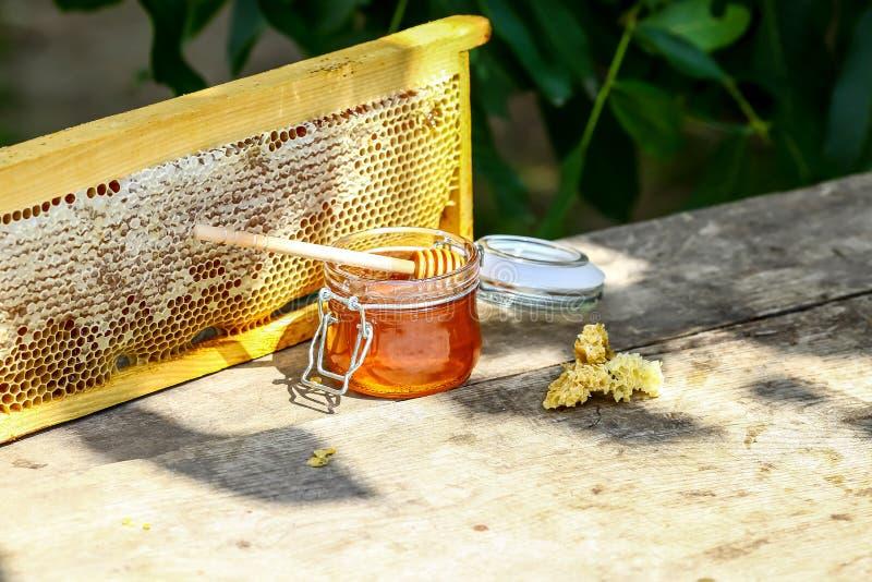 Miel en bol en verre, plongeur en bois de miel et nids d'abeilles dans le cadre en bois avec de pleines cellules de miel scellées photographie stock