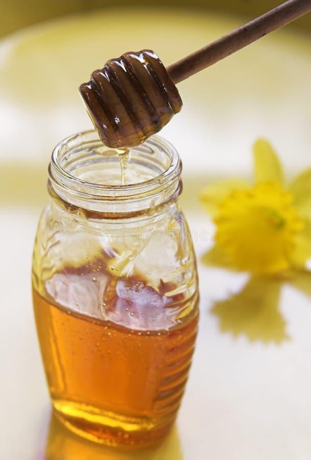 Miel et cuillère photo stock