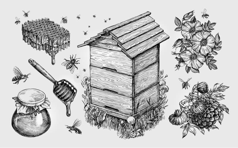 Miel, hydromel L'apiculture, apiculture, abeilles esquissent l'illustration de vecteur illustration de vecteur