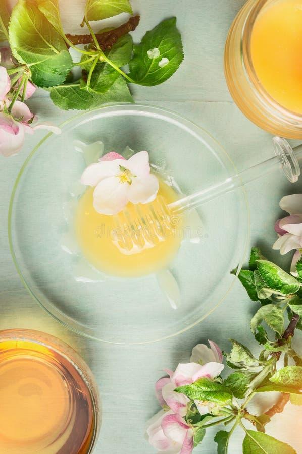 Miel léger avec le plongeur de la glace, du pot et de la tasse de thé avec le groupe de floraison de ressort sur le fond en bois  photos libres de droits