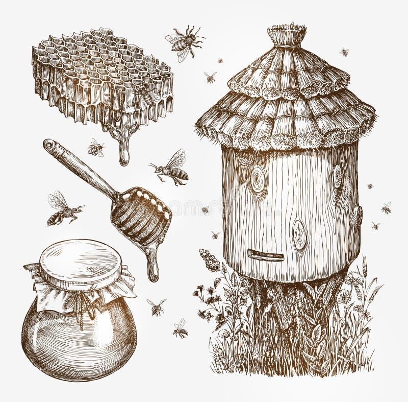 Miel, l'apiculture, abeilles Illustration de vecteur de croquis de vintage de collection illustration libre de droits