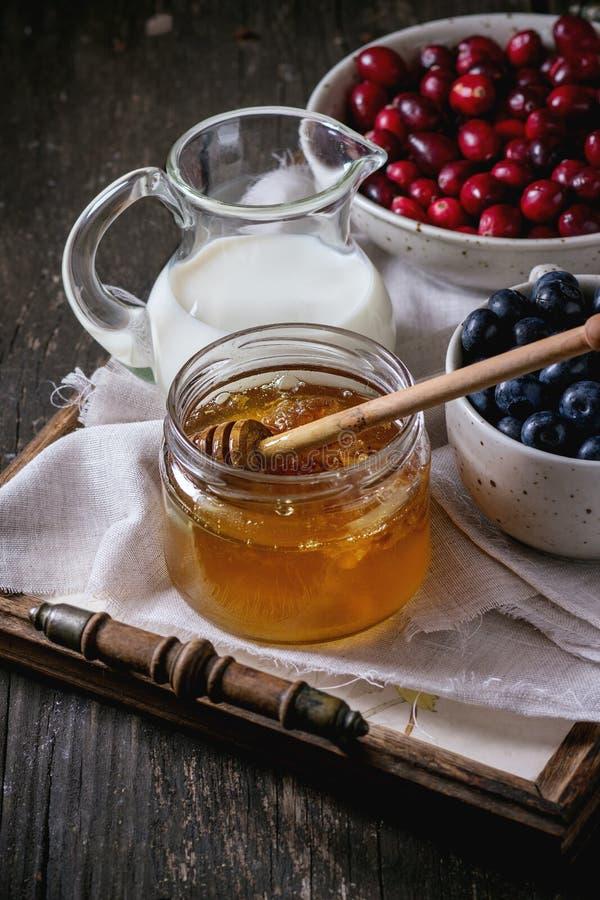 Miel, lait et baies photographie stock libre de droits